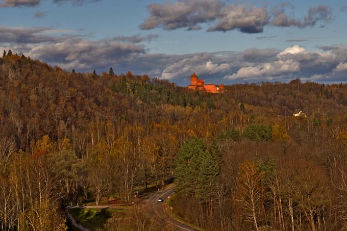 Bos bij kasteel Turaida, Letland