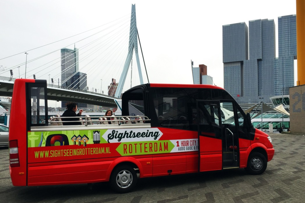 Sightseeing bus tour, Rotterdam