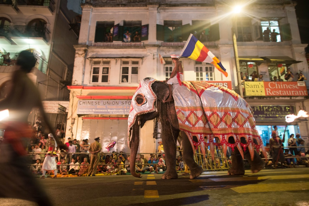 Olifantenparades door de straten van Kandy, Sri Lanka