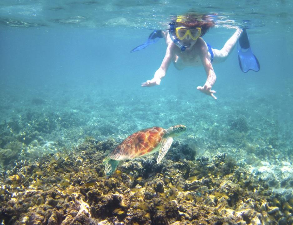 snorkelen_zwemmen_duiken_vakantie_tropisch_zee_zon